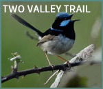 Two Valley Trail